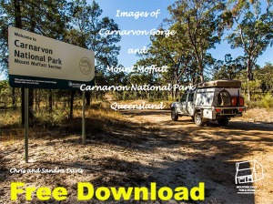 carnarvon cover free download