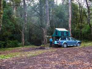 Camping at Banksia in Barrington Tops State Forest