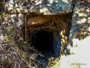 Old Mine Tunnel, Bridle Track