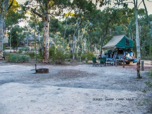 Camping at Dunns Swamp, Wollemi National Park