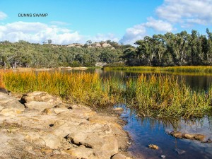 Dunns Swamp, Wollemi National Park