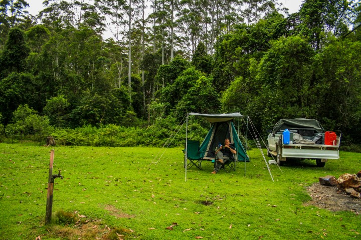 Delightful camping deep within the forest at Swans Crossing Reserve