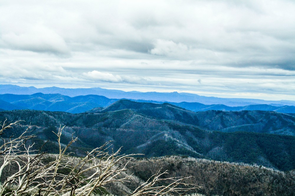 High country views near Mount Hotham