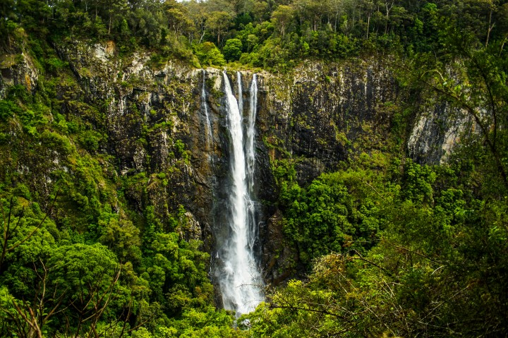 The impressive highest single drop waterfall in the Southern Hemisphere Ellenborough Falls