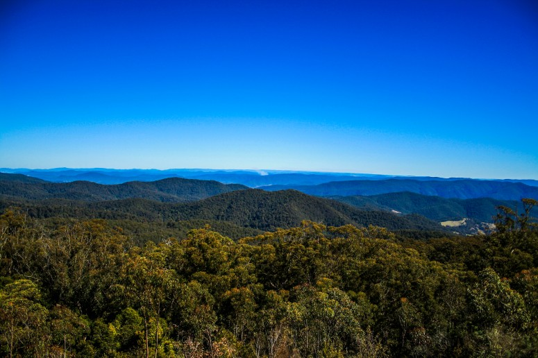 The outstanding view from the fire tower lookout at Blue Knob