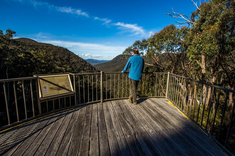 south east forest np myanba gorge