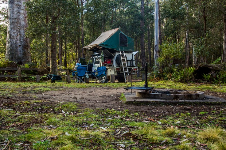 south east forest np six mile creek camp