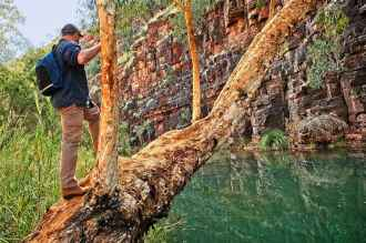 Walking Dales Gorge