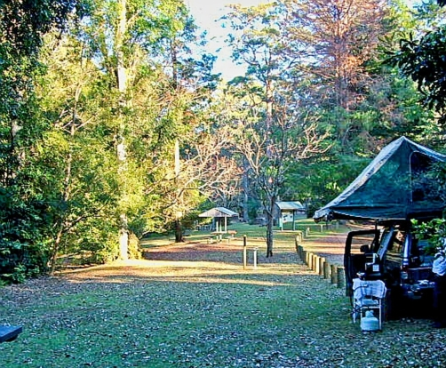 """Our """"peaceful"""" camp at Dingo Tops campground, Tapin Tops National Park"""