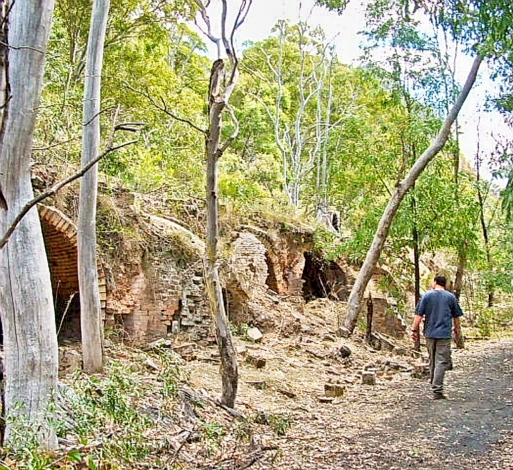 Inspecting the remains of the historic Coke Ovens at Newnes
