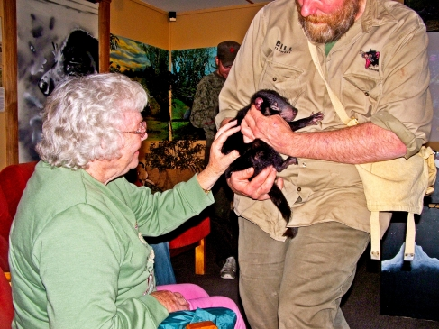 Sandra's mum up close and personal with the Tasmanian Devils