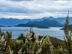 Lake Pedder in the South West Wilderness