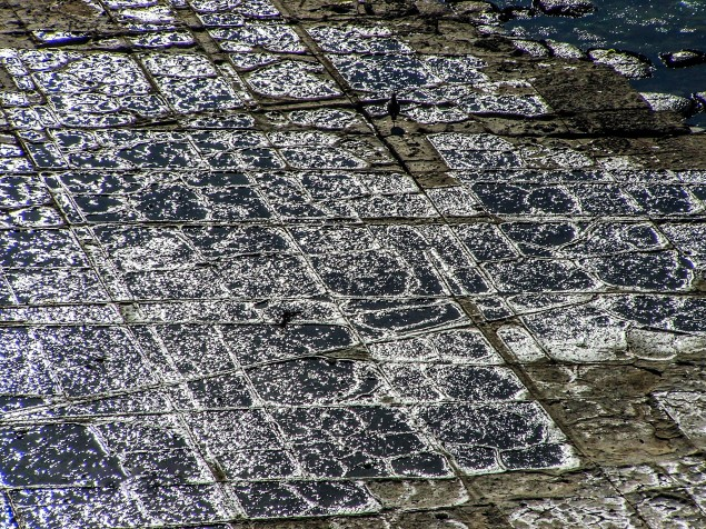 As is the intriguing Tesselated Pavement