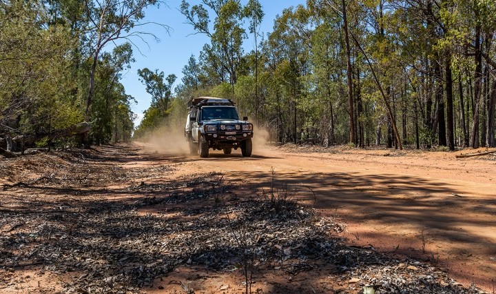 Driving the Pilliga